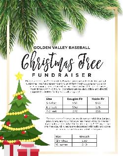 Christmas Fundraiser.Christmas Tree Fundraiser For Golden Valley Baseball